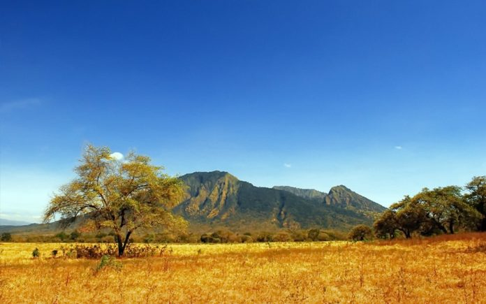 baluran-national-park