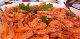 boiled-shrimp