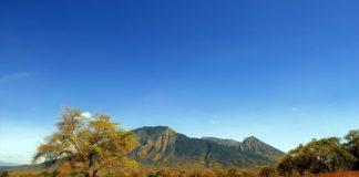 baluran-national-park