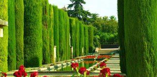 córdoba-garden-xelexi-com